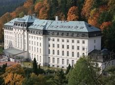 Accompaning Person Radium Palace -